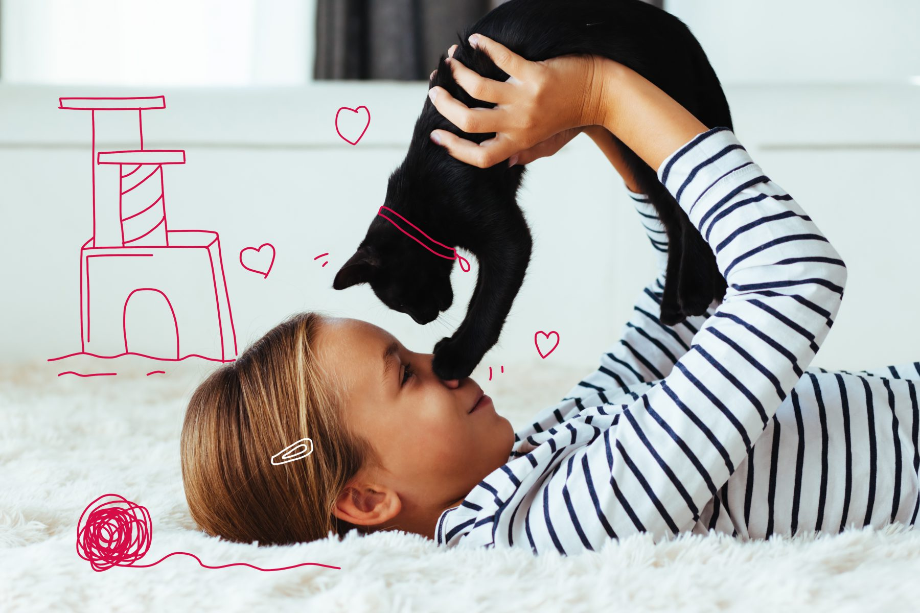 Child playing with kitten - Dental care for cats
