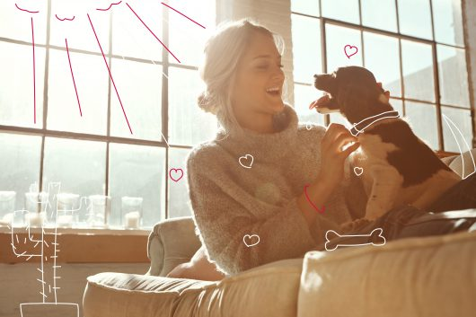 Why do dogs lick you? A dog and woman in a bright and sunny apartment