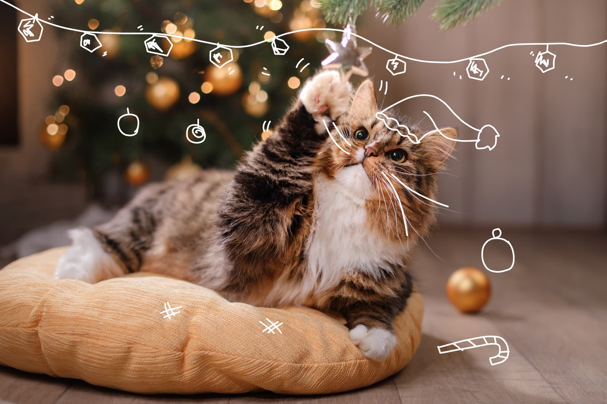 A cat plays with Christmas tree decorations. Cat vs Christmas Tree.