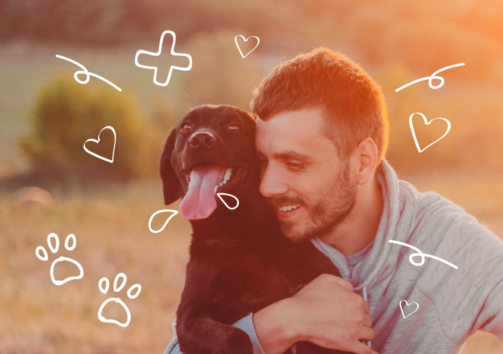 A man cuddles his dog. What do you need to do to find your missing dog?
