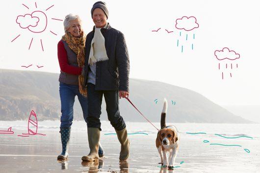 Power dog walks - a couple walk with a Beagle on the beach
