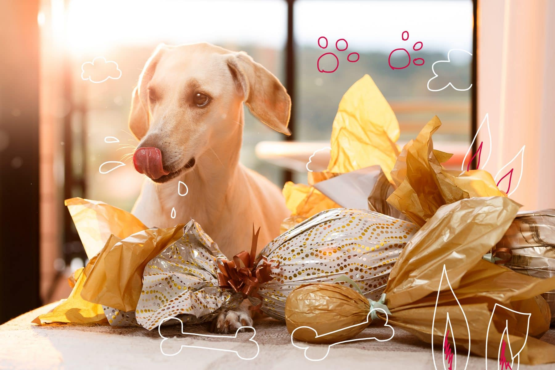 Pet insurance - a dog sits among chocolate eggs