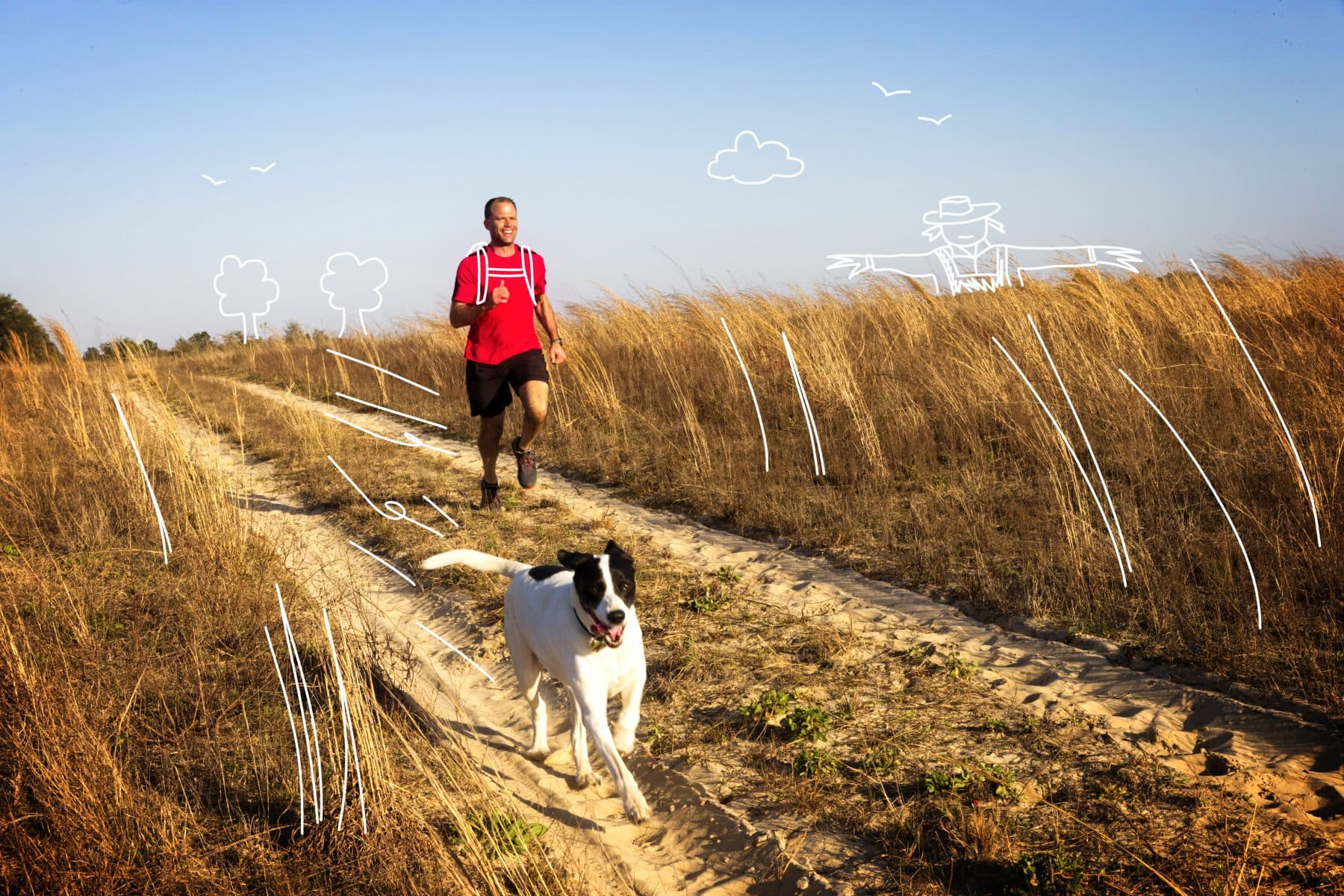 Running with your dog - a man and dog enjoy jogging together. Why not try Canicross?