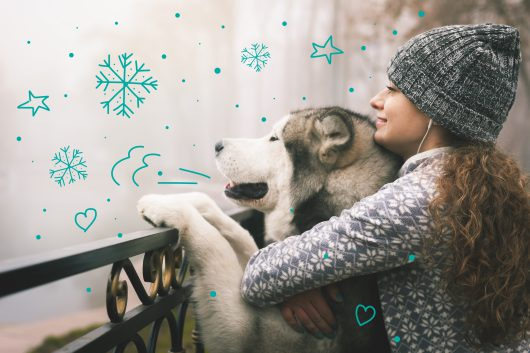 Keeping pets safe in winter - A girl cuddles up with her Alaskan Malamute dog