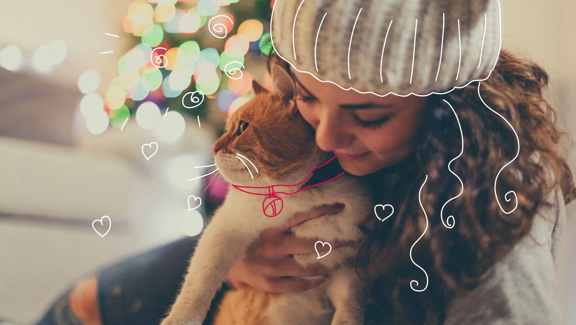 Cat insurance - Cat Christmas gifts - Cuddling with her cat