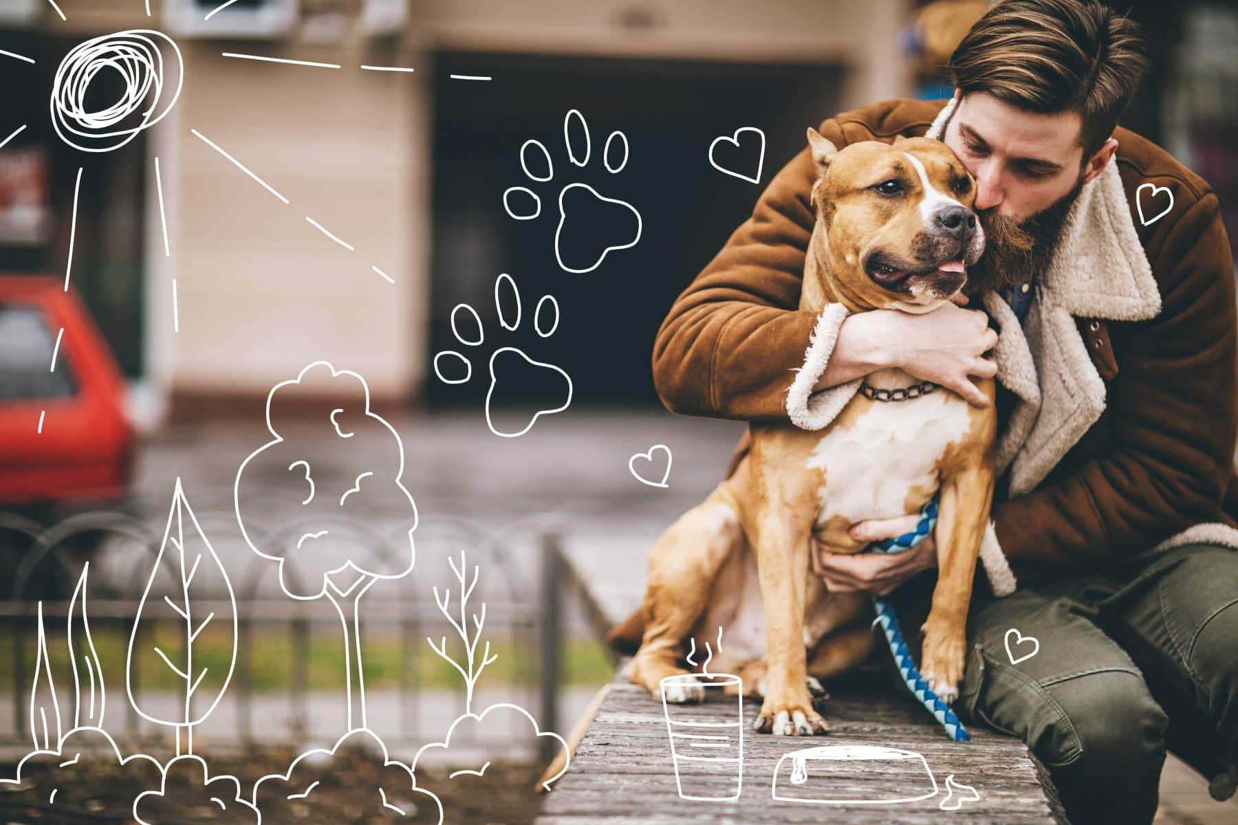 Pet diabetes - an kissing his terrier dog