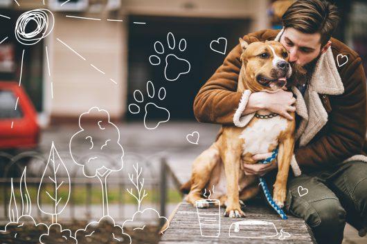 Dog fleas - a man kissing his terrier dog
