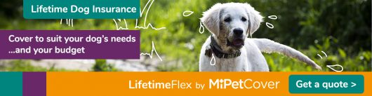 Dog insurance quotes from MiPet Cover