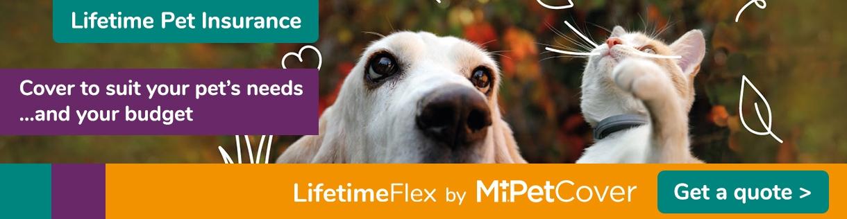 MiPet Cover LifetimeFlex Pet Quote