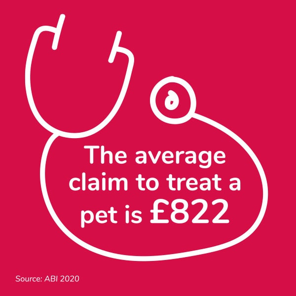 The average claim to treat a pet is £822