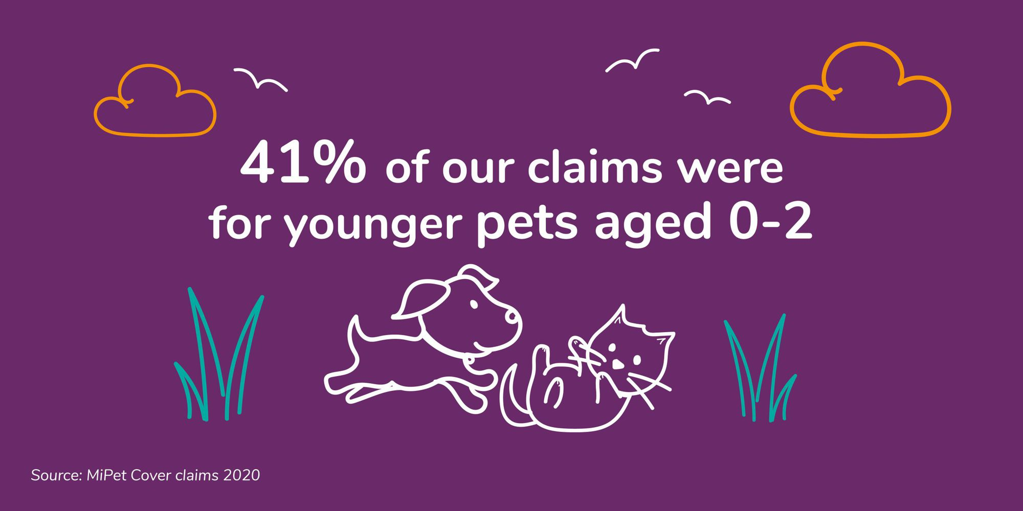 41% of MiPet Cover pet insurance claims were for pats aged 0-2 years old