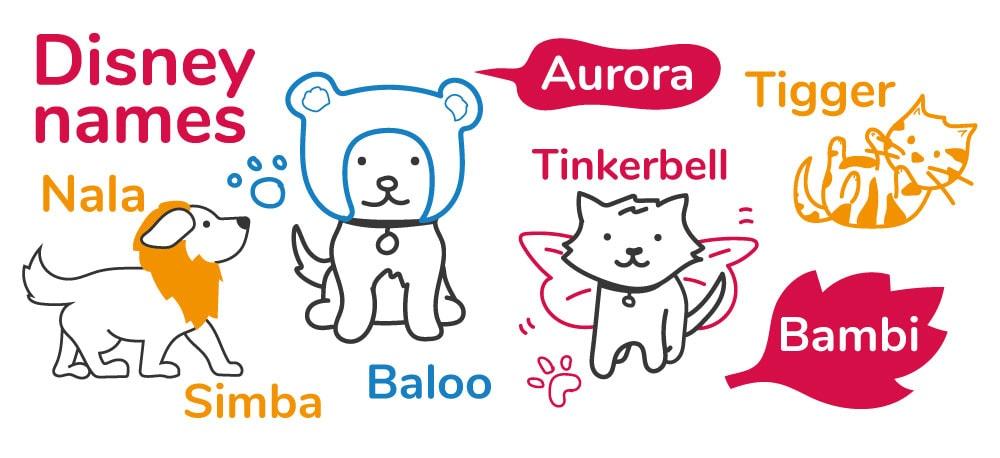 Disney inspired pet names for cats and dogs - Nala, Simba, Baloo, Aurora, Tinkerbell, Tigger and Bambi