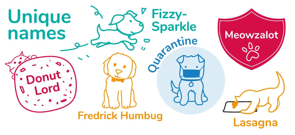 Unique and quirky pet names for cats and dogs