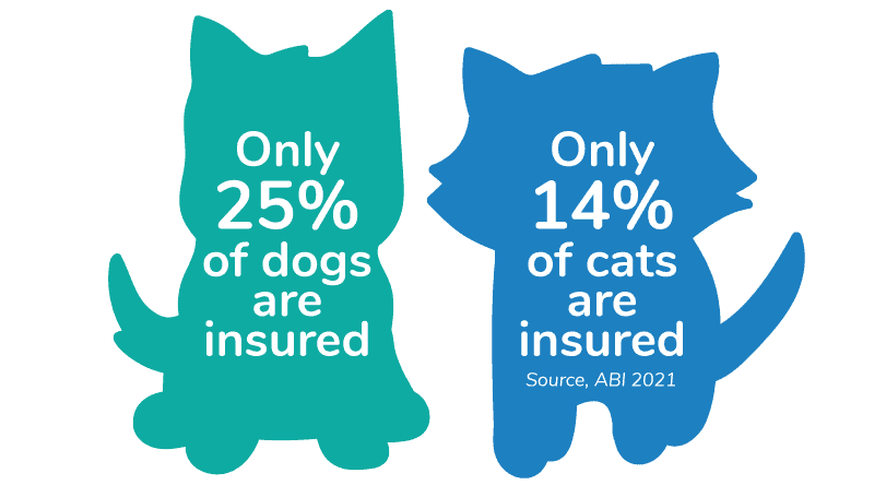 The % of insured dogs and cats in the UK