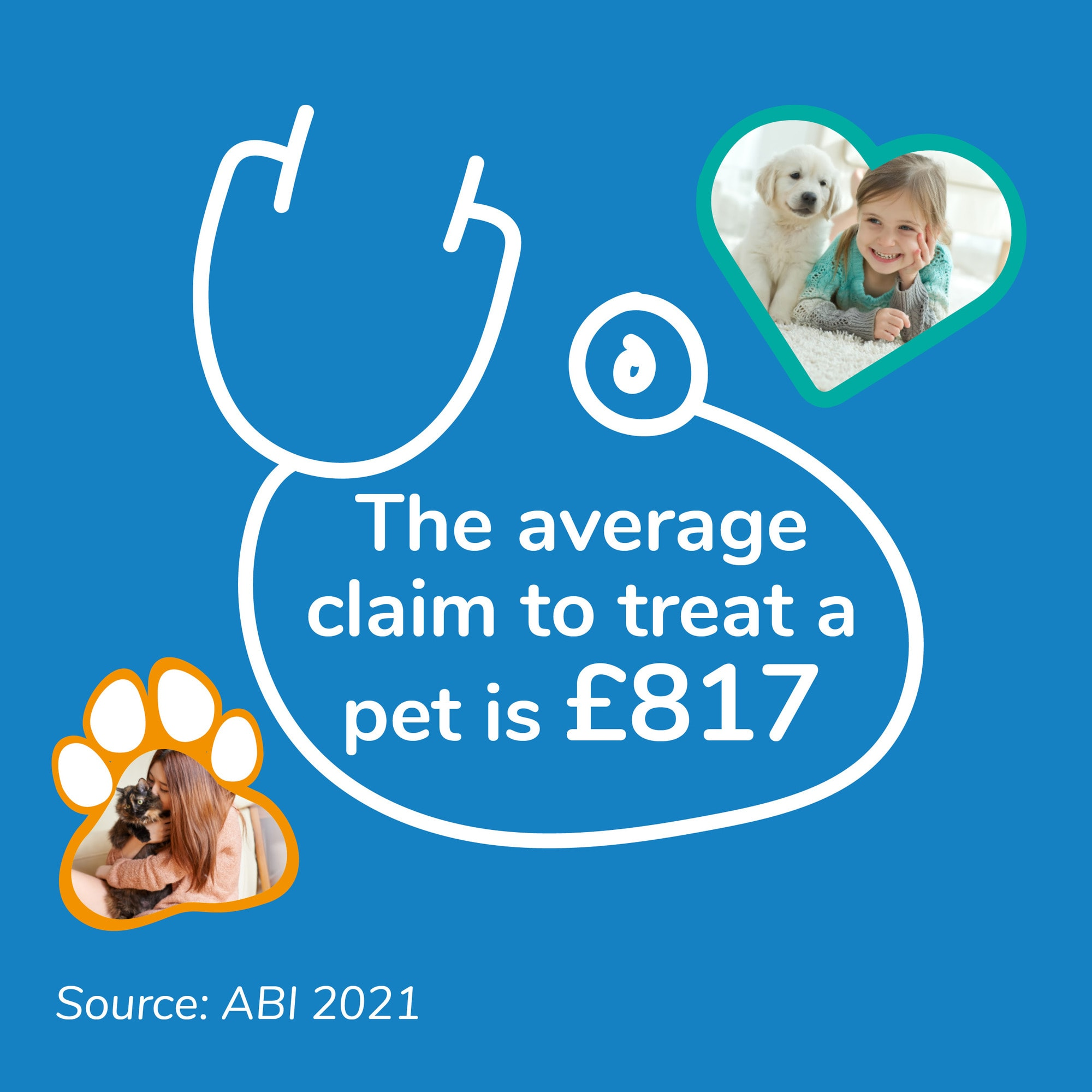 The average pet insurance claim during 2020 was £817