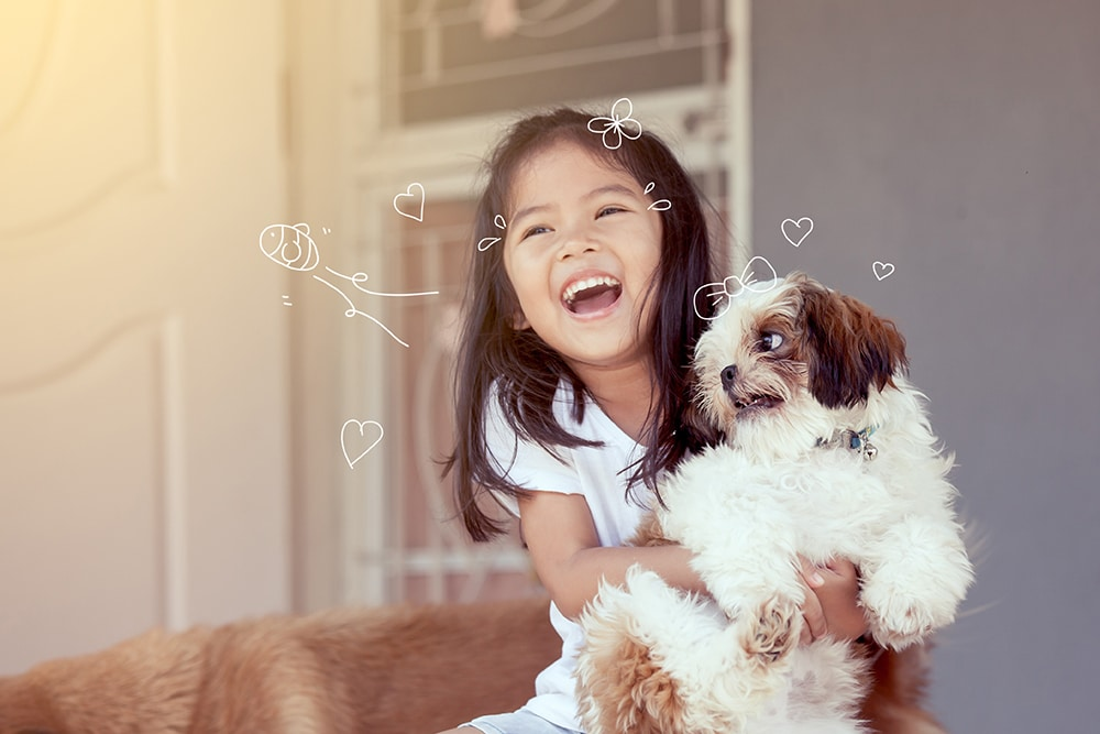 How often should I clean my dog's eyes? A young girl laughing, holding a Shih-Tzu dog